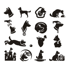 Collections doc icons