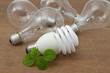 Incandescent and Compact  fluorescent , concept energy-saving