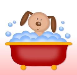 puppy makes bath time