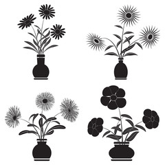 Flowers in pots vector set