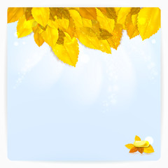 Vector card with stylish composition of autumn leaves.