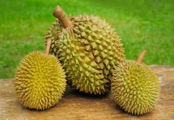 Three Ripen Durians
