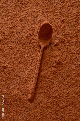 Cocoa spoon