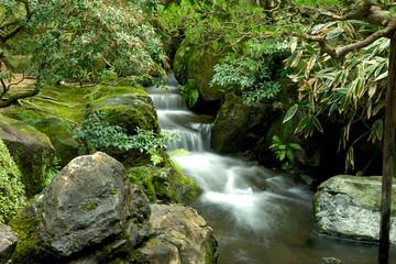 庭園の渓流