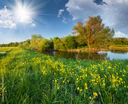 Beautiful summer landscape with the river - 54732552