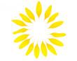 Leinwanddruck Bild - Ein Kreis aus Sonnenblumenblütenblättern