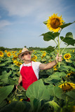 farmer standing in a sunflower field