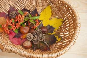 Autumn collection, leaves, conkers, pinecones, berries, basket.