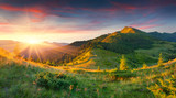 Fototapety Beautiful summer landscape in the mountains
