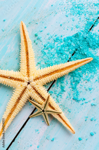 Starfish - 54740151