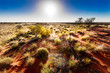 canvas print picture - Australian outback