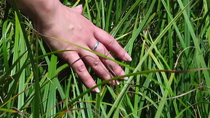 female hand slides on a grass