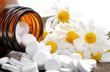 Schüßlersalze und Kamille