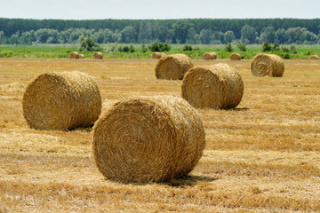 Haystack on field
