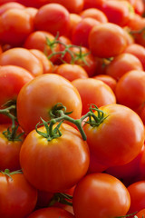 Pile of vined tomatoes
