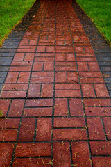 Red Brick path on lawn