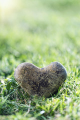 Stone heart in green grass
