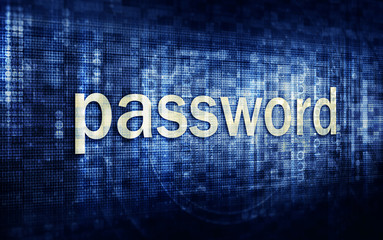 Security password concept