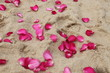 Rose petals in the sand.