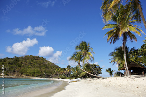 tropical beach in Carribean