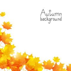 Autumn background with place for text
