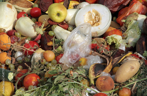 scraps of rotten fruit and vegetables used as manure in an farm