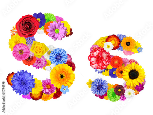 Flower Alphabet Isolated on White - Letter S
