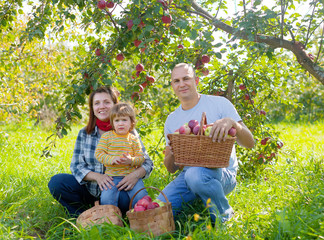 Happy  family in the orchard
