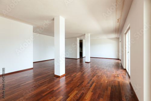 interior apartment, large living room with two columns