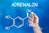 Hand  zeichnet chemische Strukturformel von Adrenalin poster