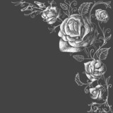 Roses decoration over dark background