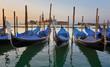Venise - la Giudecca et gondoles