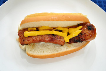 Keilbasa on a Bun with Mustard