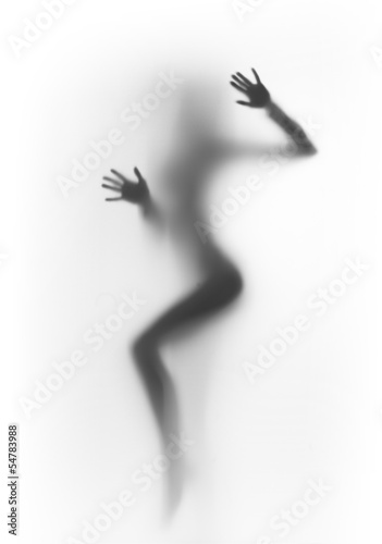 Poster Beautiful and sexy dancer woman silhouette