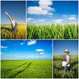 farmer fields collage