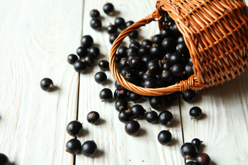 berries of black currant on the table and a basket