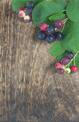 Bunch of first wild autumn berry on wooden background