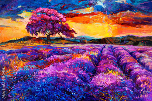Lavender fields - 54800593