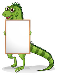An iguana holding a framed board