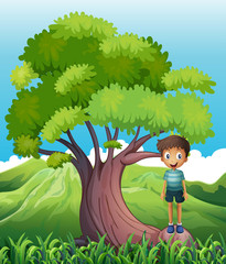 A boy standing on a root of a tree