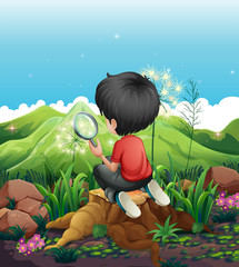 A boy above a stump with a magnifying glass