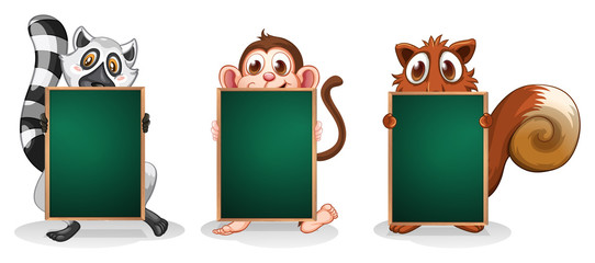 Three animals with empty boards