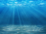 Tranquil underwater scene with copy space - 54801901