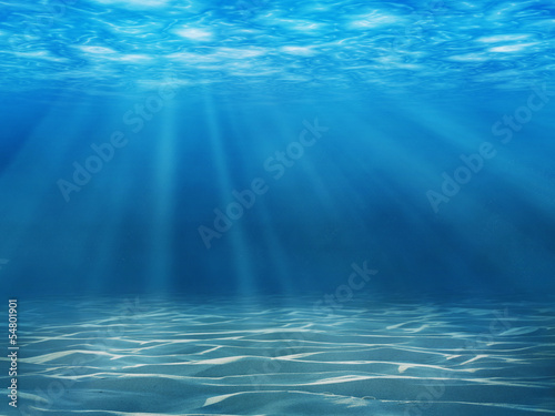 Foto op Canvas Onder water Tranquil underwater scene with copy space