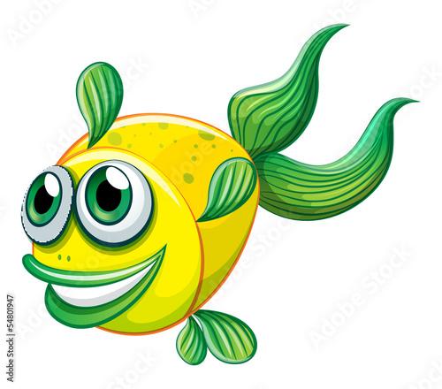 剪贴画动物图像图形孤立宠物微笑插图水下河海海洋深