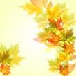 Яркий баннер с осенними листьями