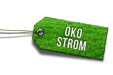 Anhänger Gras Grün Öko Strom