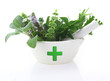 Porcelain mortar with pharmacy cross and fresh herbs