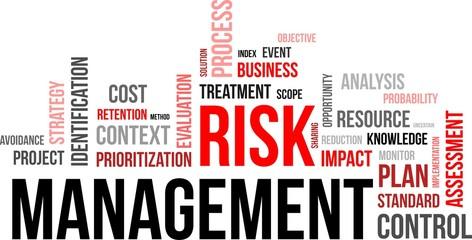 word coud - risk management