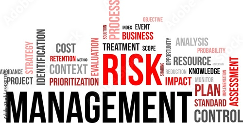 word coud - risk management
